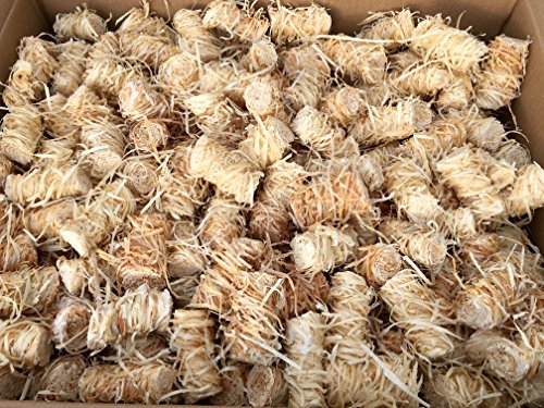 10 kg Grillanzünder von Zündwolli