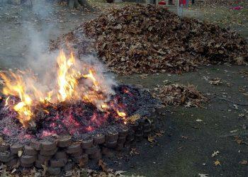 Feuerstelle Vergleich | Lagerfeuer & Grillstelle für Garten