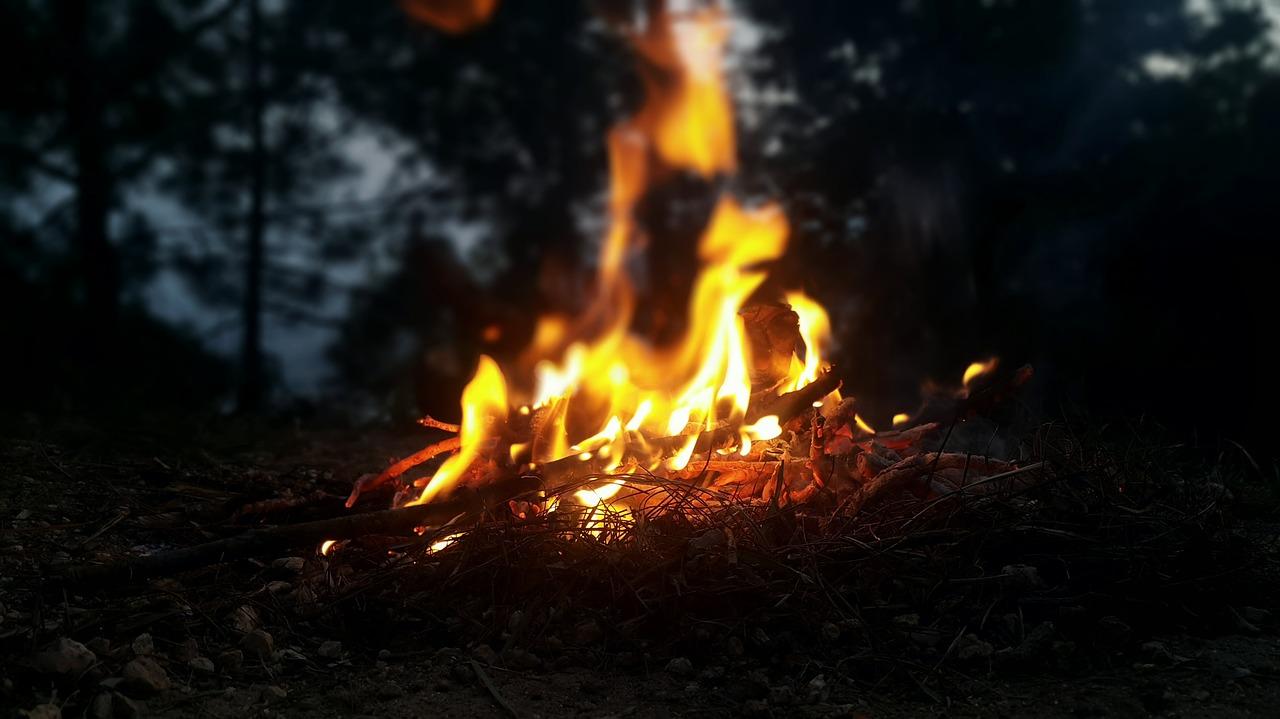 Feuer Lagerfeuer Wald Glut Flammen