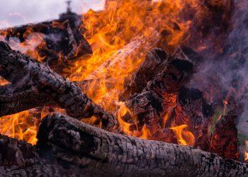 Holzanzünder Vergleich   Grillanzünder aus Holz & Wachs kaufen