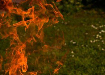 Feuer richtig machen (Anleitung) | Lagerfeuer in Garten anmachen