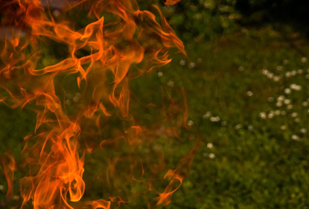 Feuer legen Garten Wiese Rasen Gänseblümchen