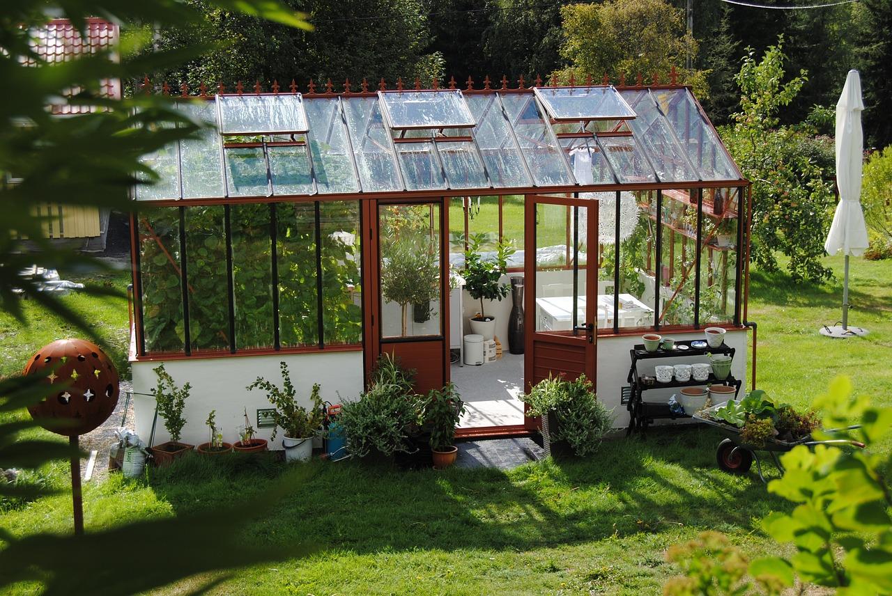 Garten Gewächshaus Rasen Pflanzen