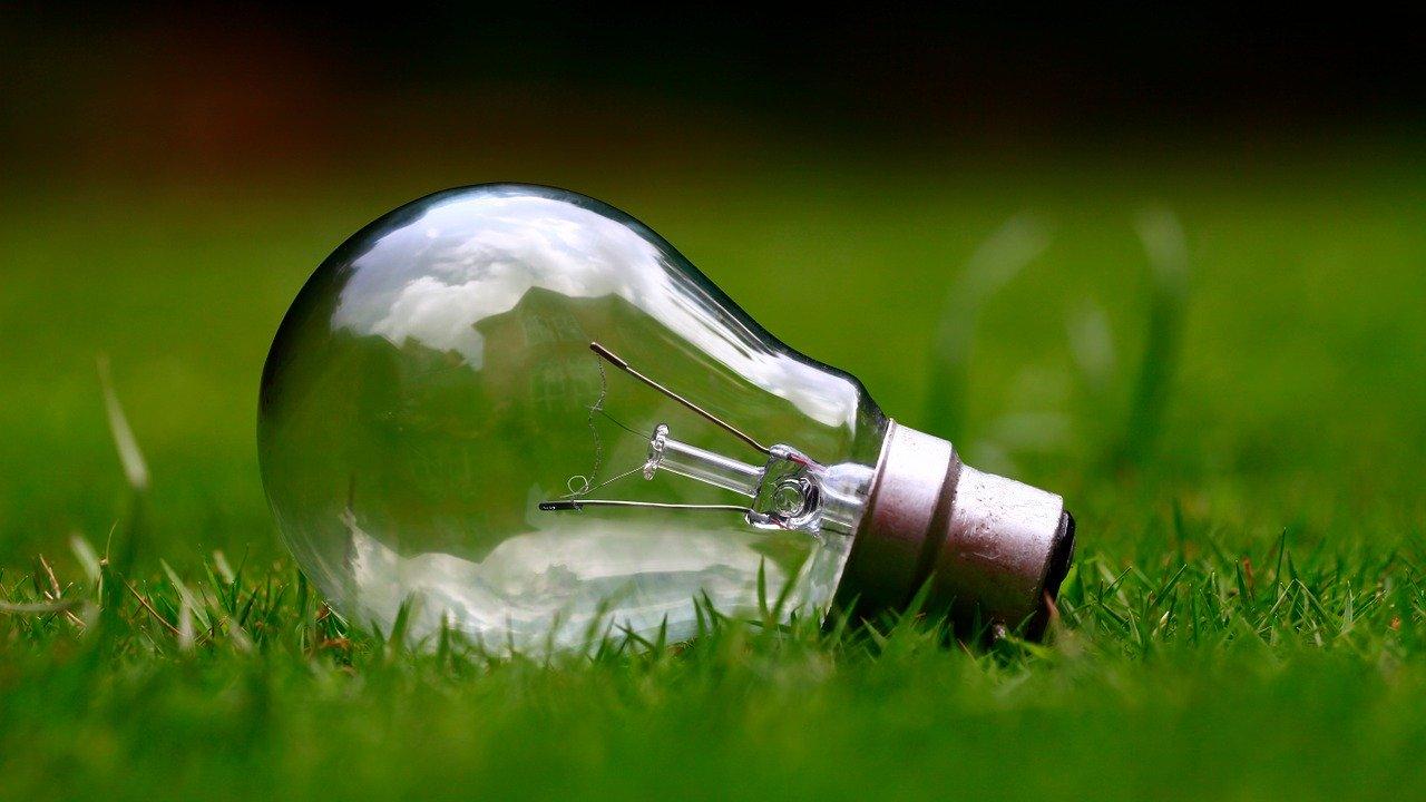 Glühbirne Zubehör Ersatzteil Wiese Gras