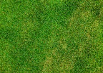 Feuerschale auf Rasen stellen? Rasenschutz für Wiese in Garten