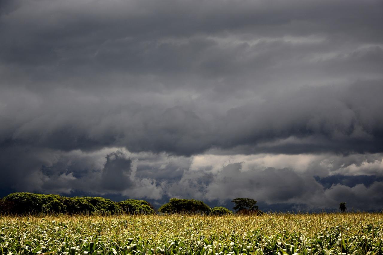 Regen Sturm Starkregen Witterung Gewitter