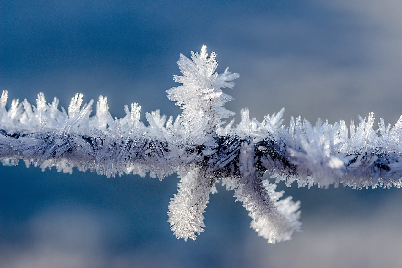 Eiskristalle Frost Eis Kälte Schnee