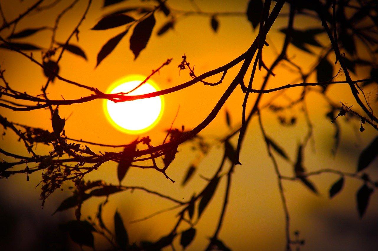 Sonne Sonnenschein Sonnenlicht