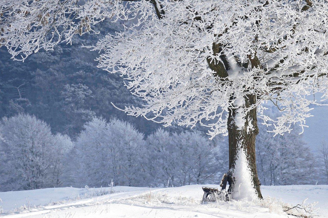 Winter Schnee Eis Kälte Winterlandschaft