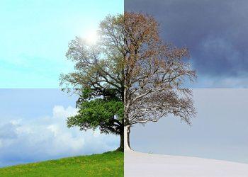 Ab wann heizen? | Heizung einschalten, anmachen & aufdrehen