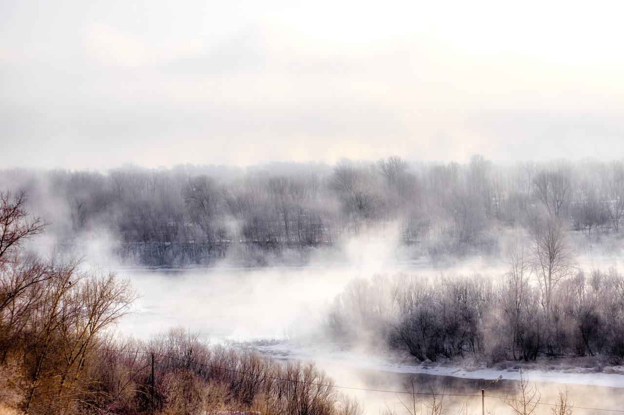 Nebel Frost Winter