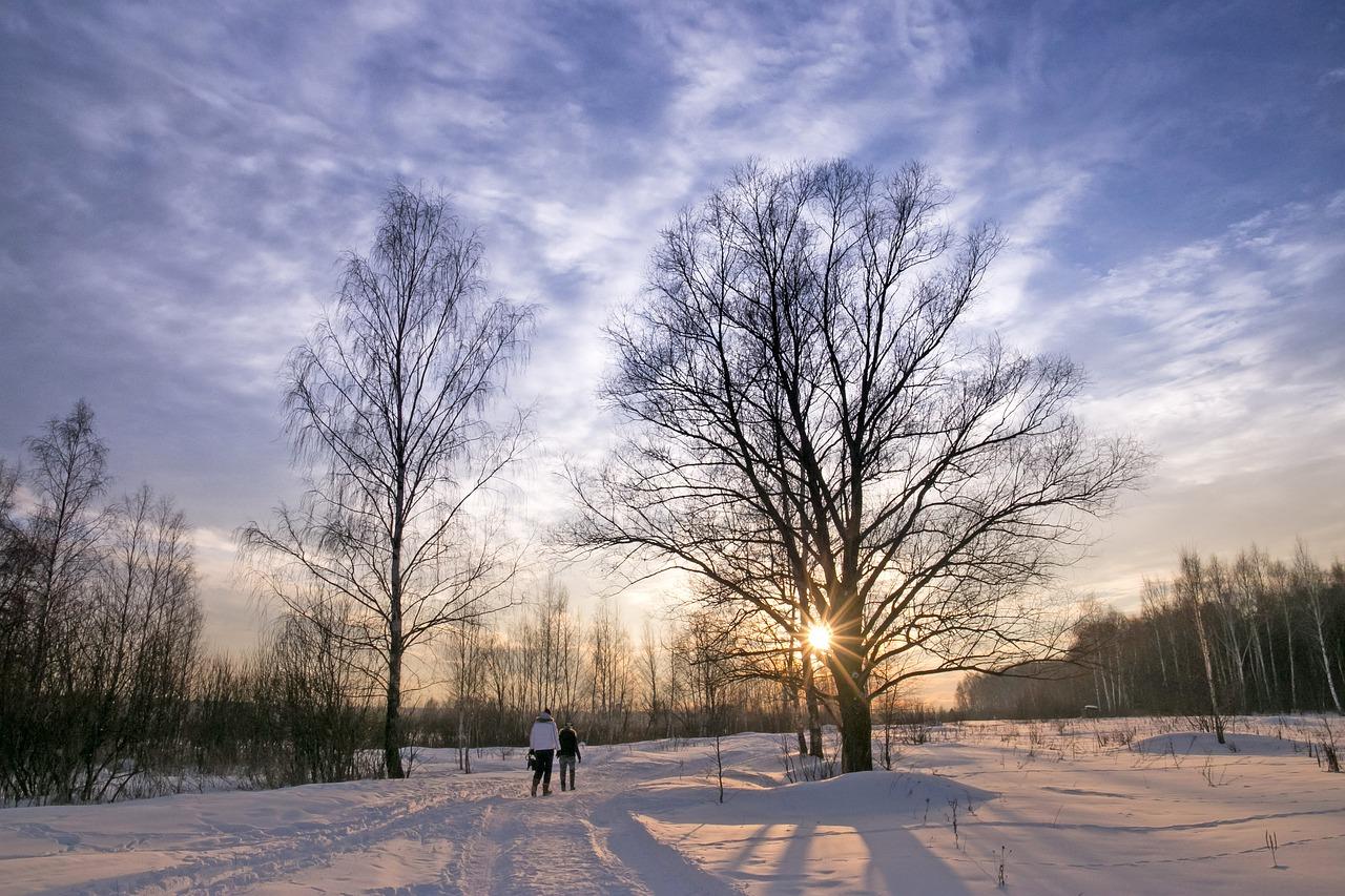 Winter Sonne kalt